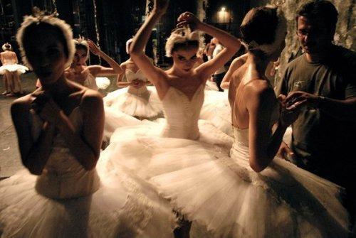 The Classy Wedding