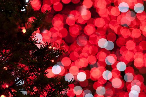 merry christmas christmas fan s onlineChristmas Tumblr