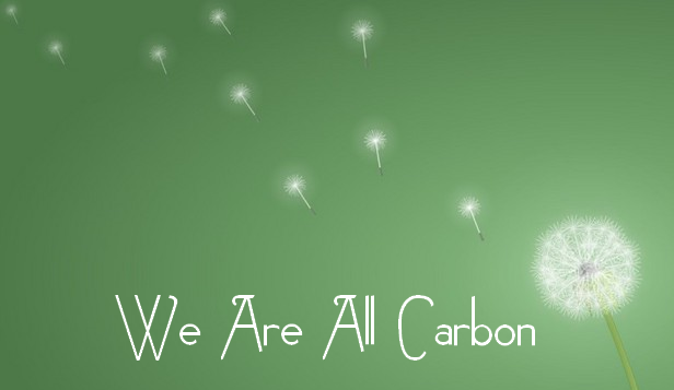 we are all carbon