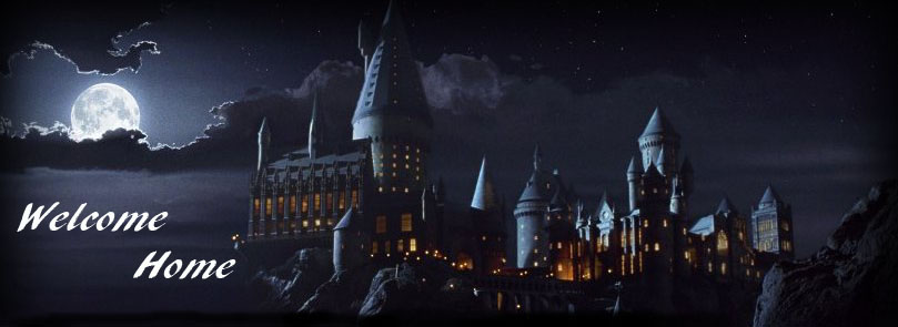 For Potter Fans
