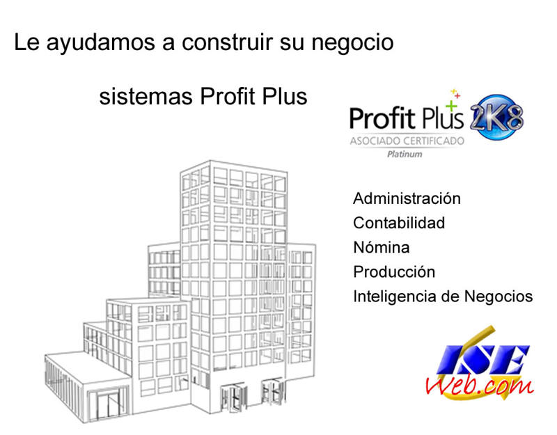 profit plus contabilidad manual