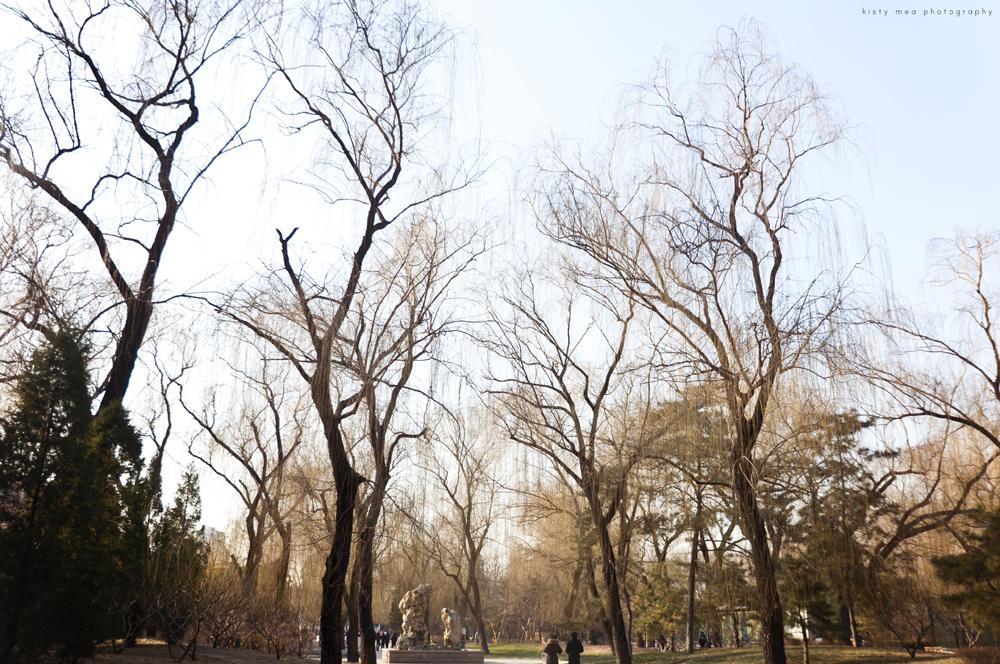 Beijing Trip 2011 Kisty Mea (kistykreme.net)