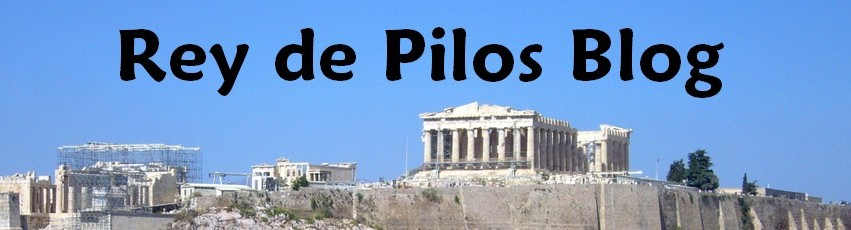 Rey de Pilos Blog