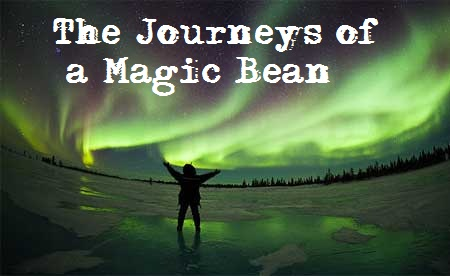 The Journeys of a Magic Bean