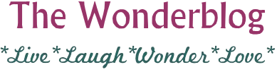 The Wonderblog