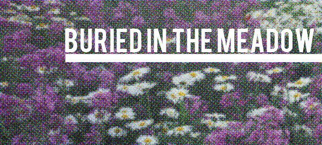 Buried in the Meadow