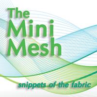 The Mini-Mesh