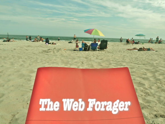 The Web Forager