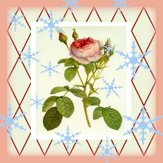 Vintage Rose Brocante Winter Wonderland...
