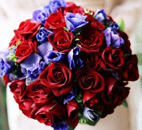 Red Rose Blue