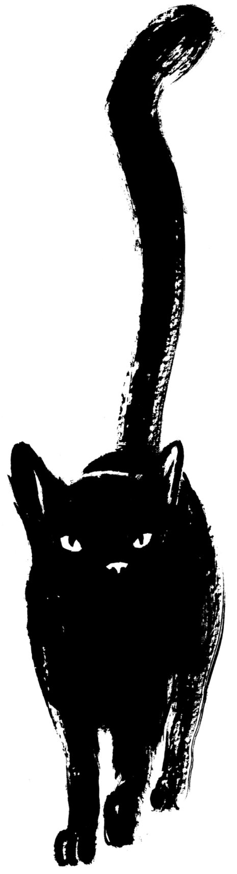 Cat Illustration Tumblr Finally the flesh refl...