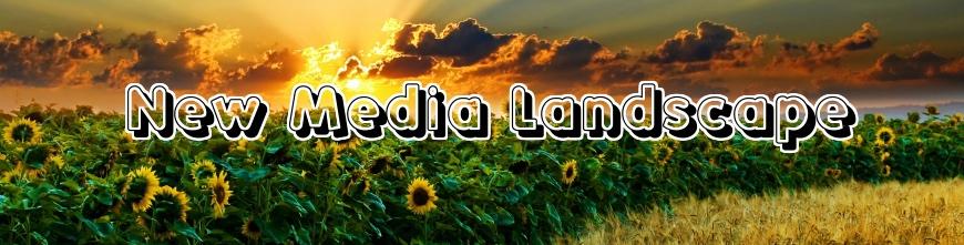 NewMediaLandscape