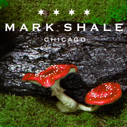 Mark Shale