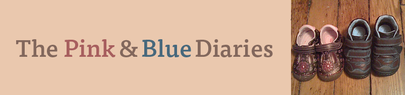 The Pink & Blue Diaries