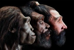 Early humans neanderthals