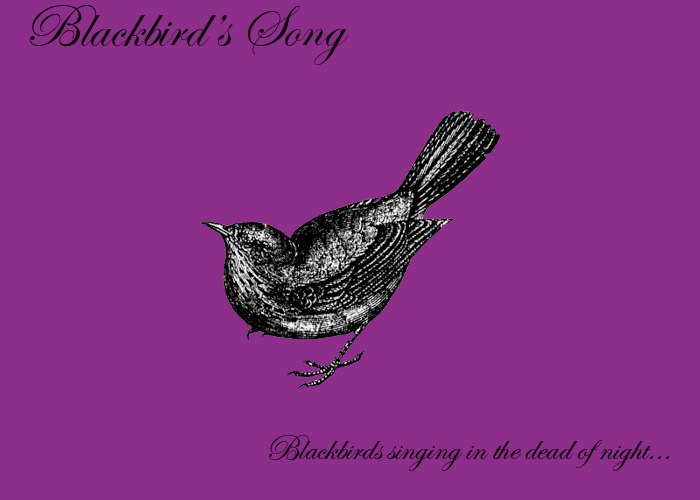 Blackbird's Song
