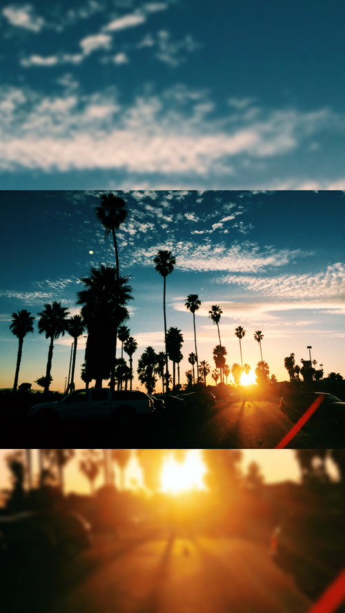 california wallpapers Tumblr