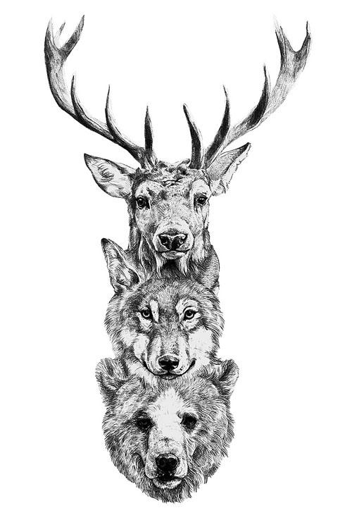 Deer. Wolf. Bear.