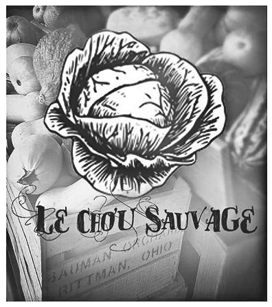 LE CHOU SAUVAGE ~photography blog~