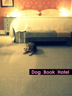 Dog, Book, Hotel