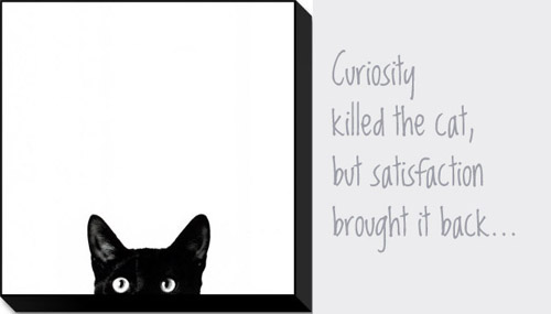 CURIOSITY KILLED NOBODY!