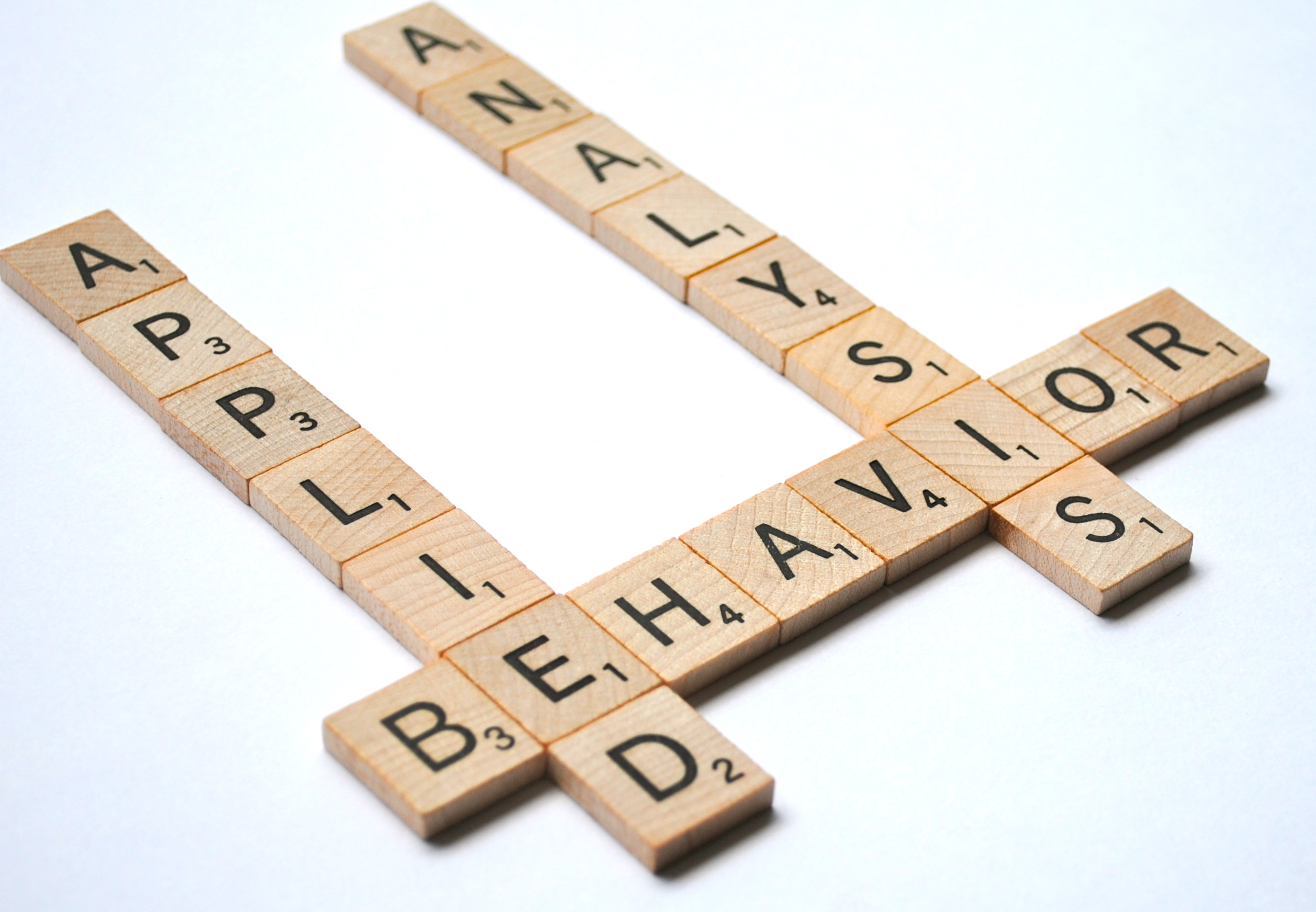 Behavior analysis its what i do simply elliott in this stage of life we always meet new people and are asked the lovely question what do you do normally when i respond there is generally some sort 1betcityfo Gallery