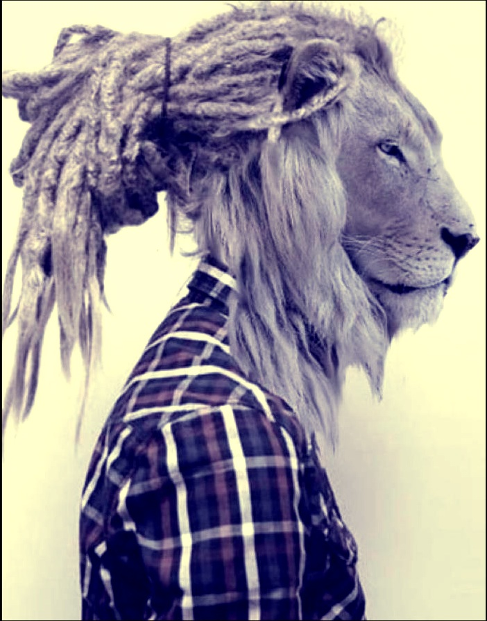 Rasta lion face sketch - photo#19