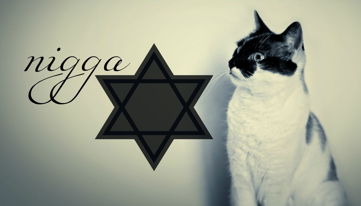 hipster cat tumblr background - photo #7