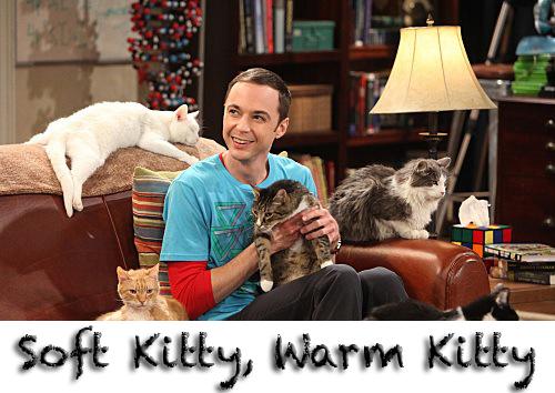 The Big Bang Theory - Soft Kitty ringtone free download
