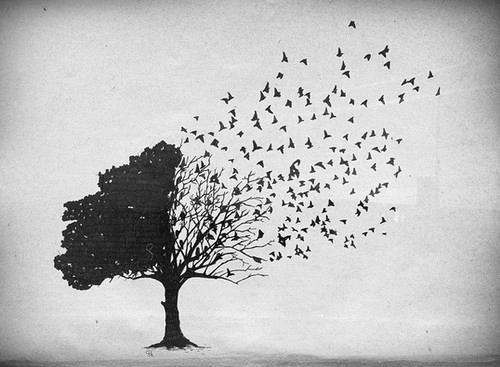 external image tree_birds.jpg