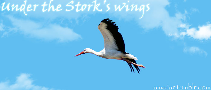 Under the stork's wings