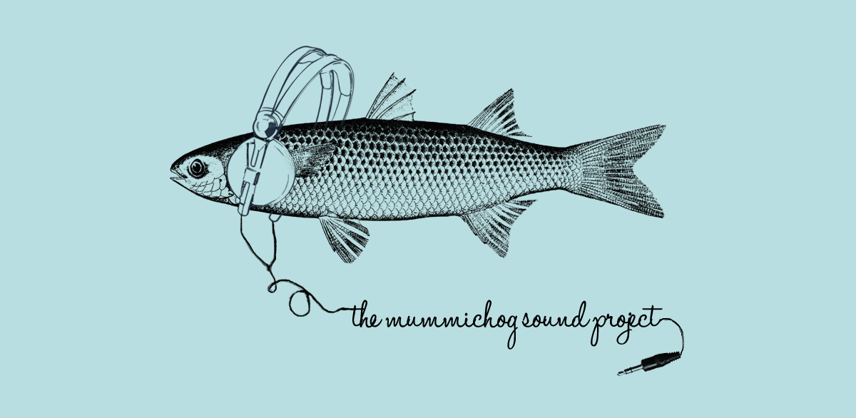 The Mummichog Sound Project