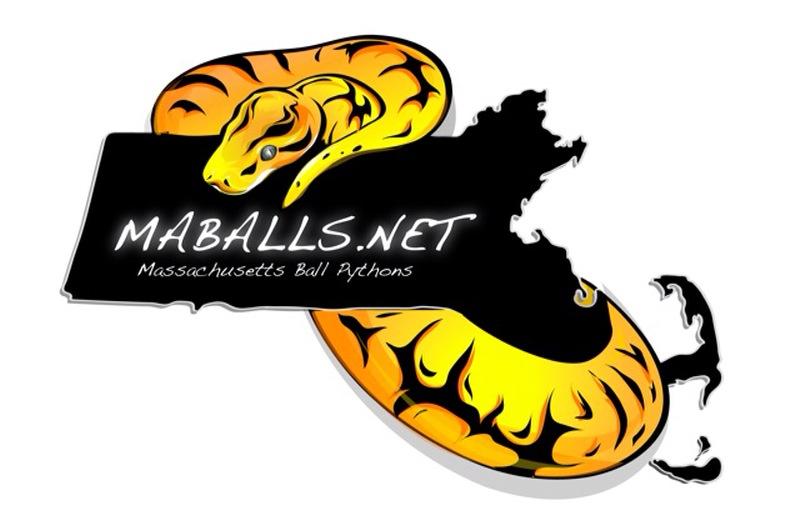 Raphael's blog (MAballs.net)