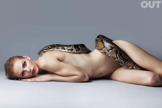 Snake taster