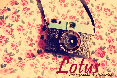 Lotus Photography & Colouring.