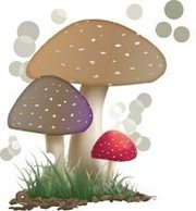 Mushroom Prints