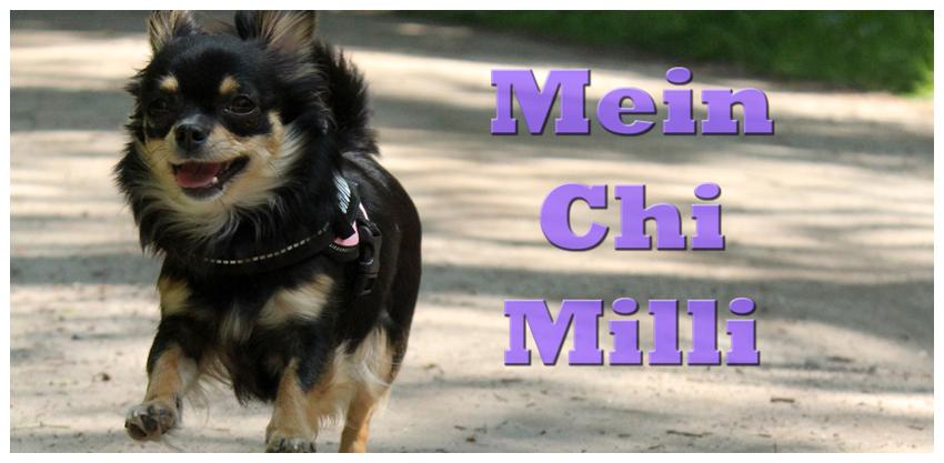 Chi-Milli