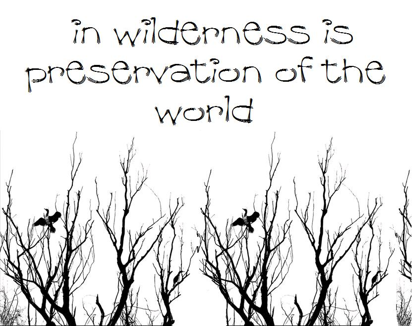 in wilderness is preservation of the world.