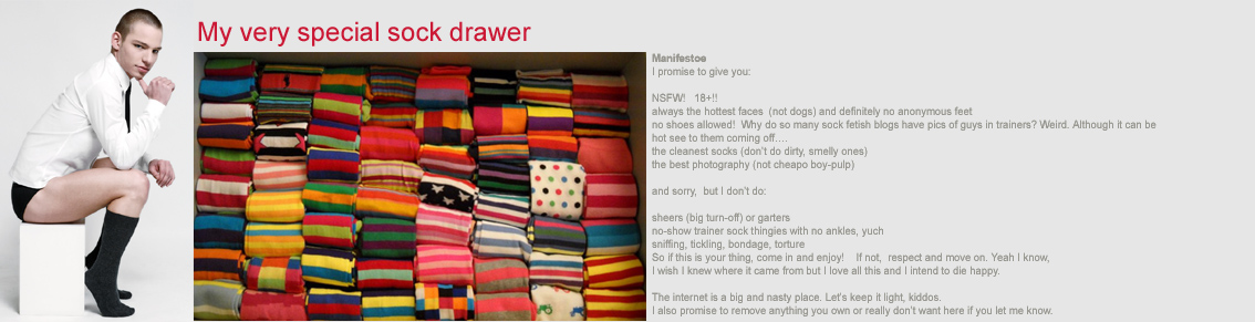 The Special Sock Drawer