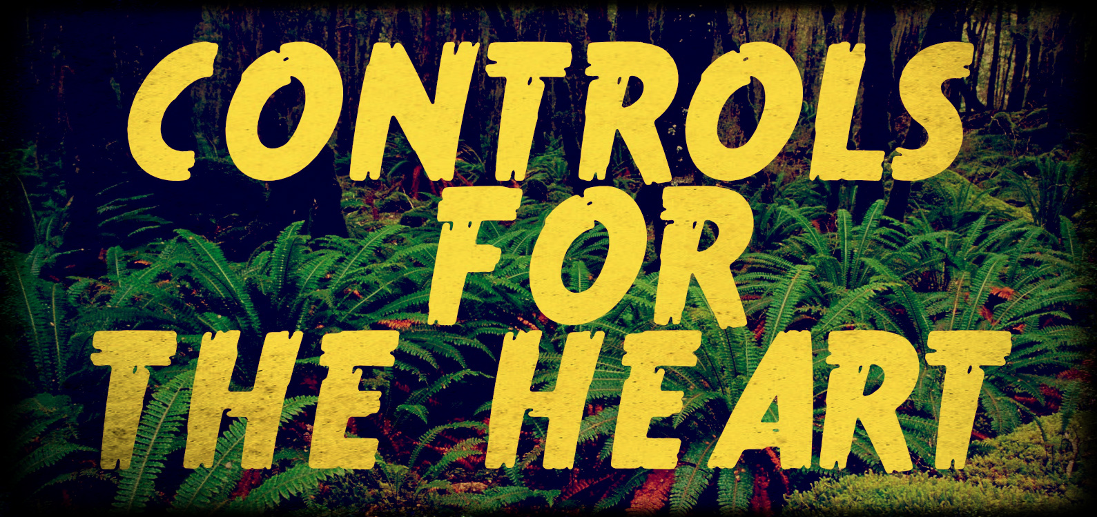CONTROLS FOR THE HEART