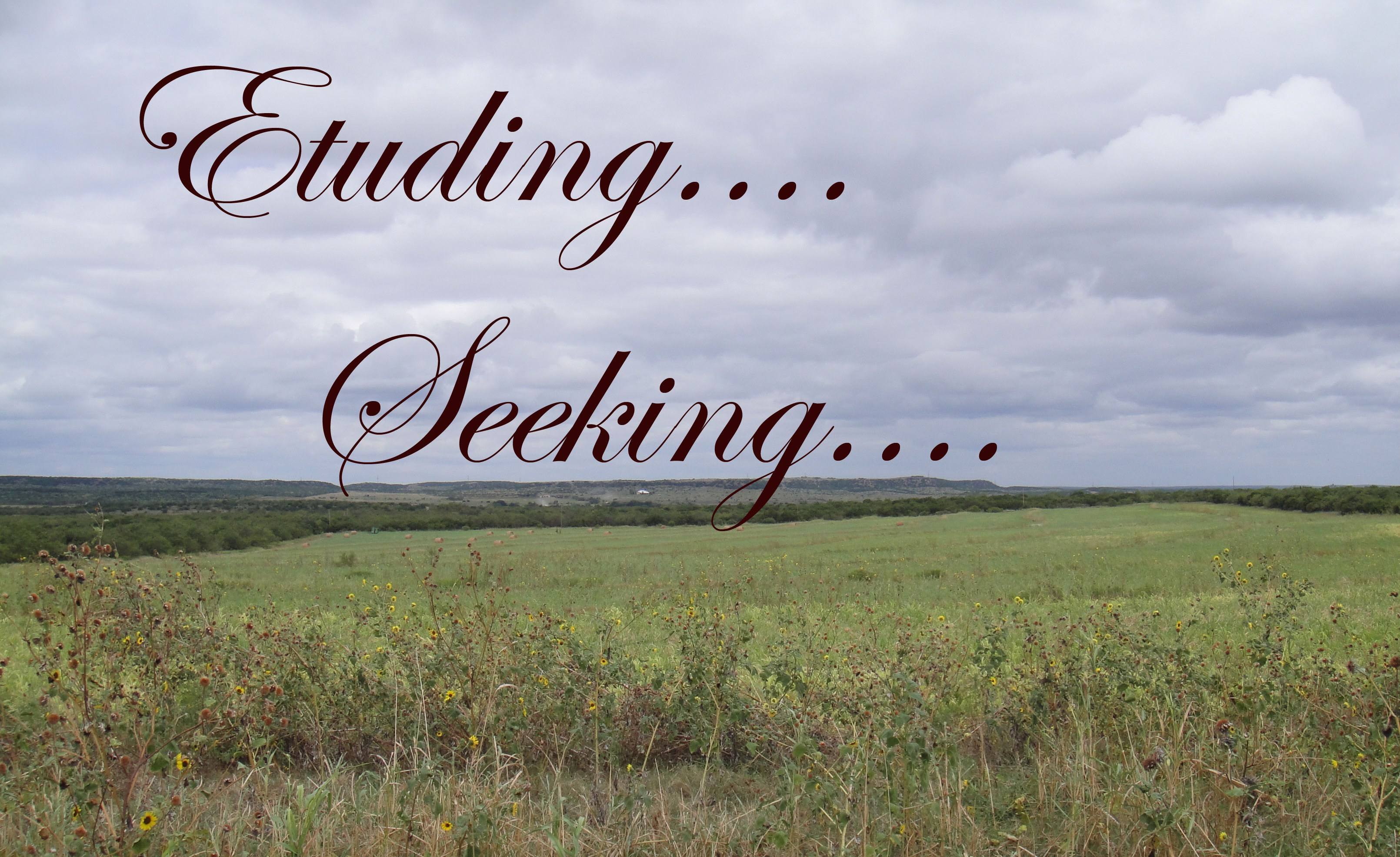 Etuding. Seeking.