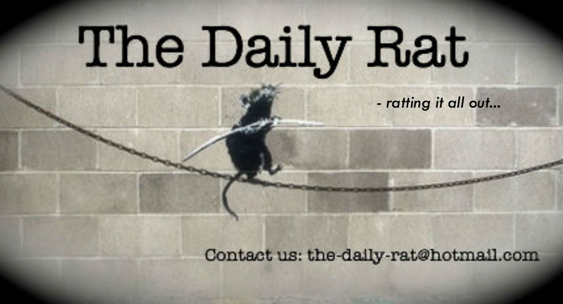 The Daily Rat