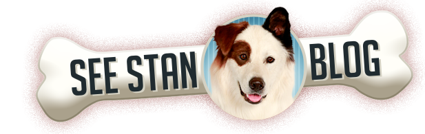 Stan From Dog with a Blog