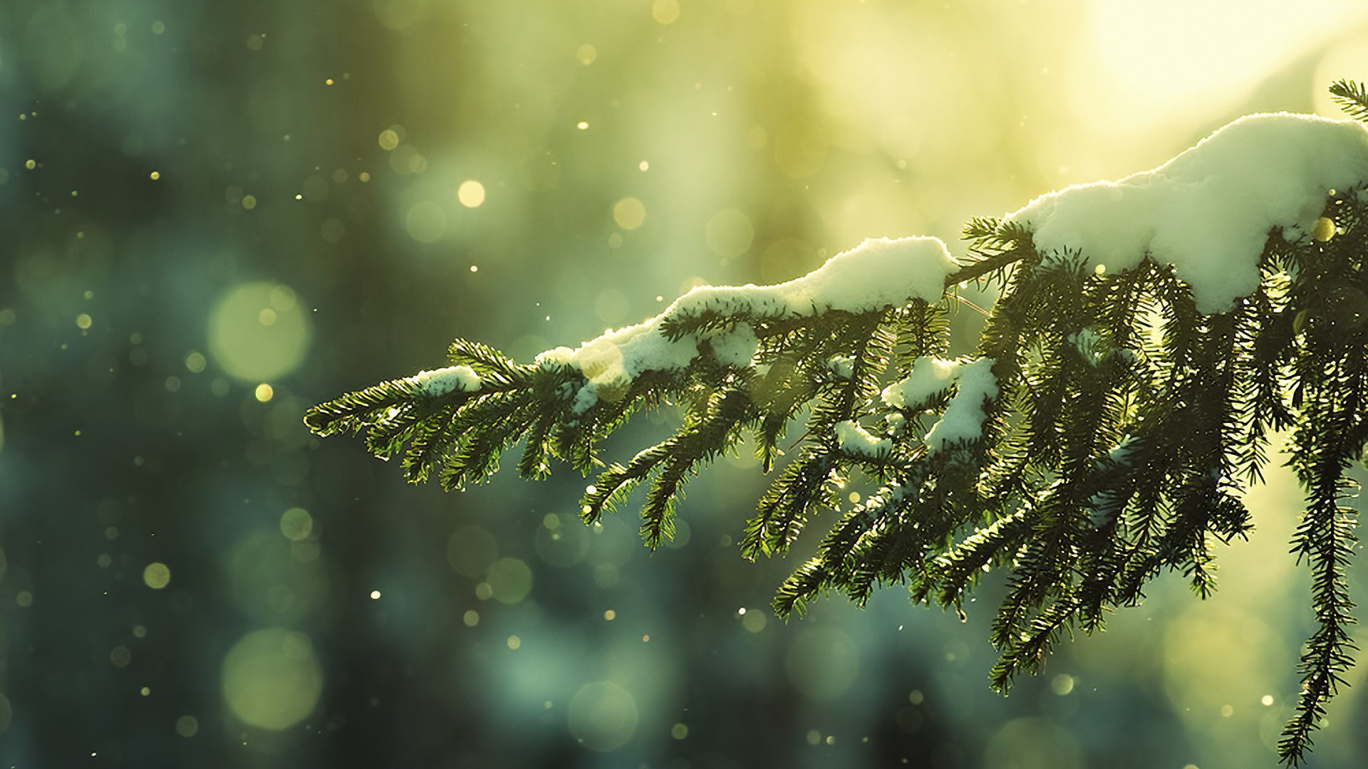 Tumblr Winter Wallpaper