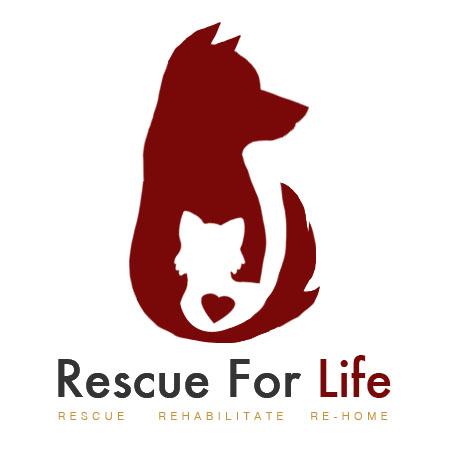 Rescue4Life