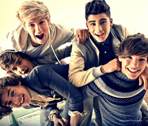 One Direction: Harry, Liam, Niall, Zayn, Louis.